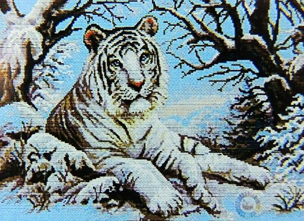 Алмазная вышивка бенгальские тигры 10